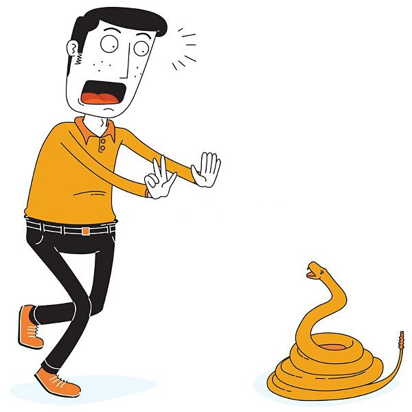 man-jumps-fear-snake-rope-analogy-advaita-vedanta-superimposition-maya-projection